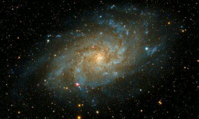 CosmosはSaganを立ち上げ、「新しいイニシアチブの実験」に道を譲ります